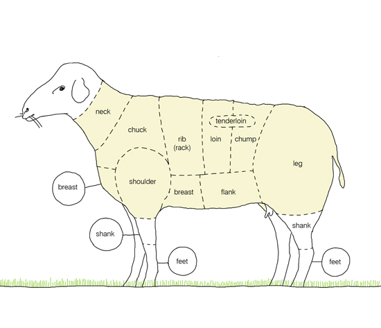 kindvall_lamb_diagram